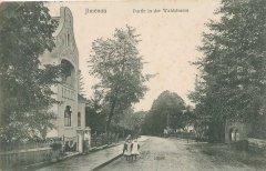 12125_Ilmenau_Partie_in_der_Waldstrasse_ca_1905.jpg