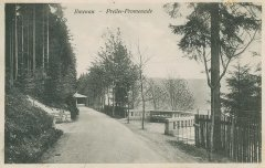 15867_Ilmenau_Preller-Promenade_ca._1923.jpg