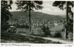 17037_Waldweg_am_Lindenberg.jpg