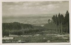 22030_Bad-Ilmenau_Blick_vom_Kickelhahn_1929.jpg