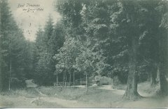 26040_Bad_Ilmenau_von_Gross-Platz_ca_1905.jpg