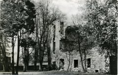 72325_Schloss-Ruine_Druck_1959.jpg