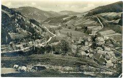 74570_Oberes_Schwarzatal_Blumenau_und_Mellenbach_1929.jpg
