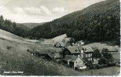 82280_Gabel_im_Thueringer_Wald_1960.jpg